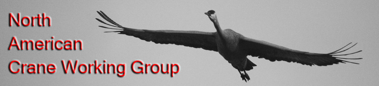 NORTH AMERICAN CRANE WORKING GROUP